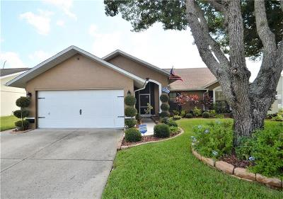 New Port Richey Single Family Home For Sale: 4600 Sawgrass Boulevard