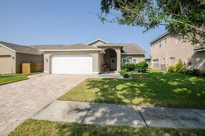 Tampa Single Family Home For Sale: 11301 Clayridge Drive