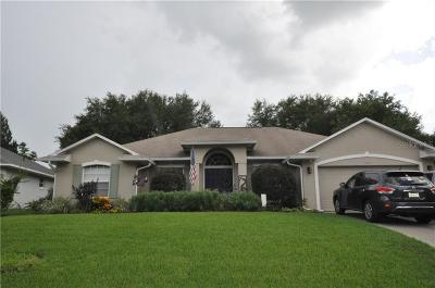 Clermont Single Family Home For Sale: 11820 Clair Place