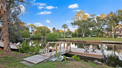 Apollo Beach, Tampa, Belleair, Belleair Beach, Belleair Shore, Clearwater Beach, Dunedin, Gulfport, Indian Rocks Beach, Indian Shores, Madeira Beach, North Redington Beach, Saint Pete Beach, Saint Petersburg, St Pete Beach, St Petersburg, Tierra Verde, Treasure Island Single Family Home For Sale: 7301 WINCHESTER DRIVE