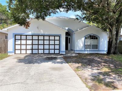 Hillsborough County, Pasco County, Pinellas County Single Family Home For Sale: 410 VINE AVENUE