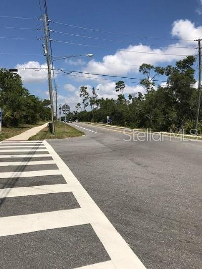 Deltona Commercial For Sale: E Doyle Road