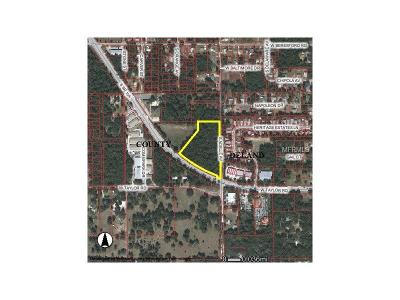 Lake County, Seminole County, Volusia County Residential Lots & Land For Sale: S State Rd 15a
