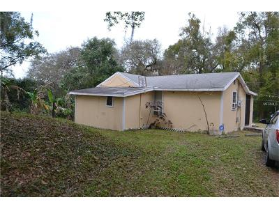 Deland Single Family Home For Sale: 328 Green Street