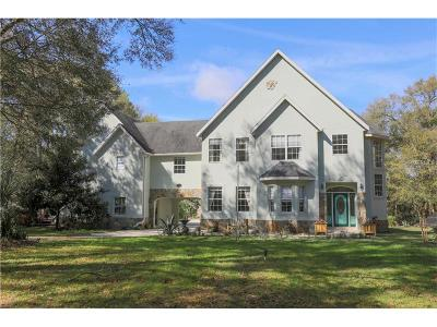 Deland Single Family Home For Sale: 1710 Bear Paw Lane