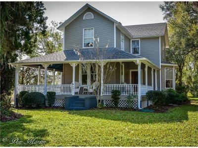 Lake Helen Single Family Home For Sale: 261 E Michigan Avenue