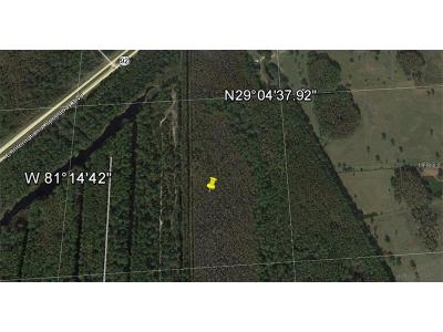 Lake County, Seminole County, Volusia County Residential Lots & Land For Sale: 6130-01-14-0150