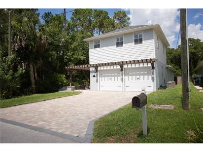 New Smyrna Beach Single Family Home For Sale: 472 Old Mission Road