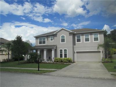 Oviedo Single Family Home For Sale: 1399 Ellis Fallon Loop