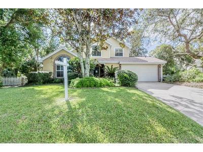 Port Orange Single Family Home For Sale: 872 Matt Lane