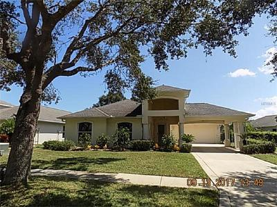 Port Orange Single Family Home For Sale: 1592 Town Park Drive