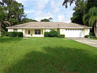 Deland Single Family Home For Sale: 3464 Grand Avenue