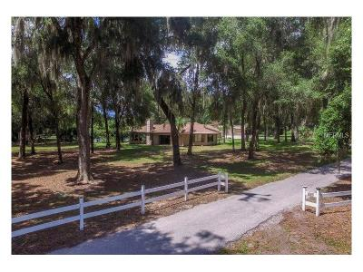 Deland Single Family Home For Sale: 625 Greens Dairy Road