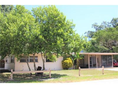 Port Orange Single Family Home For Sale: 639 Herbert Street