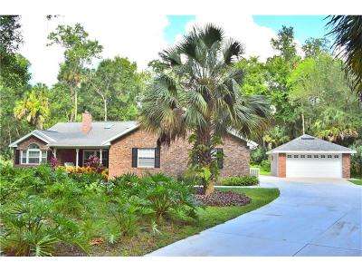 Deltona Single Family Home For Sale: 1880 Turtle Hill Road