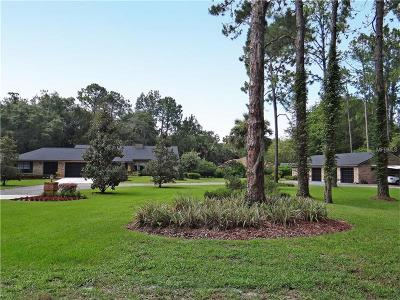 Deltona Single Family Home For Sale: 2051 Enterprise Osteen Road