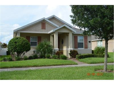 Deland Single Family Home For Sale: 219 Wellisford Way