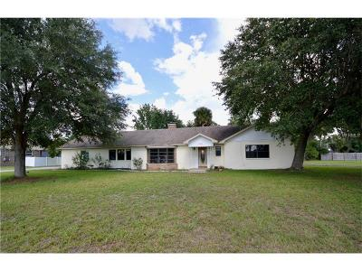 Deland Single Family Home For Sale: 1625 Hontoon Road