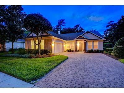 Deland Single Family Home For Sale: 410 Victoria Hills Drive