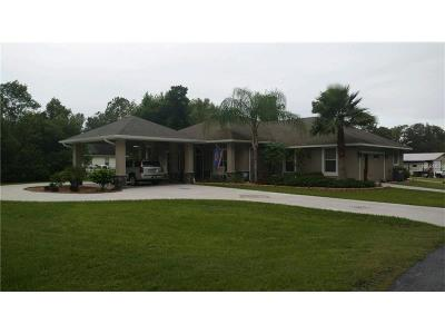 Deland Single Family Home For Sale: 2400 Marsh Road