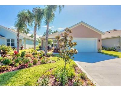 Daytona Beach Single Family Home For Sale: 201 Catriona Drive