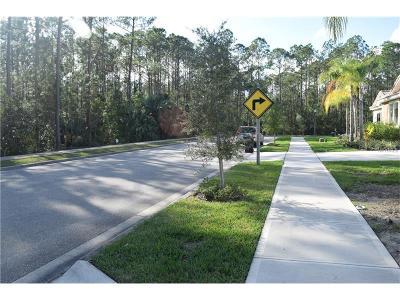 New Smyrna Beach Single Family Home For Sale: 3455 Luna Bella Lane