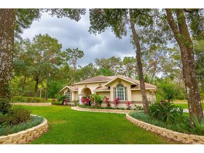 Deland Single Family Home For Sale: 800 Stonehenge