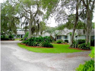 Deland Single Family Home For Sale: 3725 Marsh Road