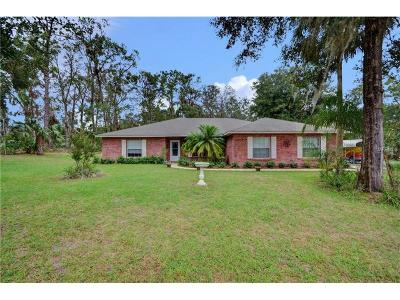 Deland Single Family Home For Sale: 1925 Van Cleef Road