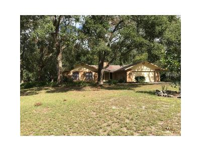 Deland Single Family Home For Sale: 2751 Charleston Place