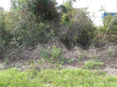 Deltona Residential Lots & Land For Sale: 1709 Doyle Road
