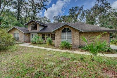 Deland Single Family Home For Sale: 2040 Chinaberry Lane