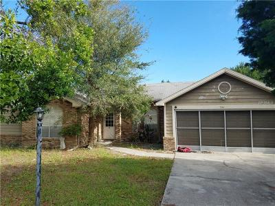 Volusia County Single Family Home For Sale: 791 Dan River Avenue