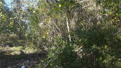 Volusia County Residential Lots & Land For Sale: 455 Napoleon Drive