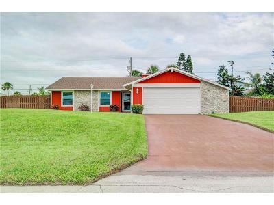Ormond Beach Single Family Home For Sale: 9 Concord Drive
