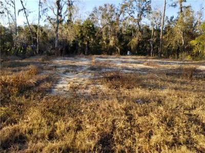 Debary Residential Lots & Land For Sale: 245 Sunrise Boulevard