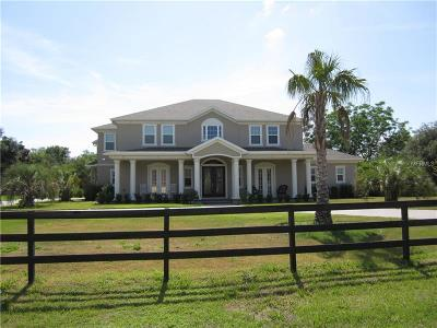 Deland Single Family Home For Sale: 1471 Shady Meadow Lane