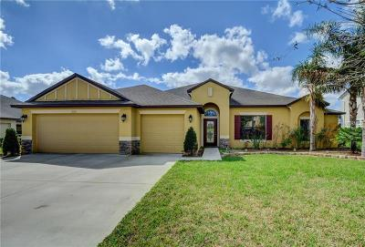 Debary Single Family Home For Sale: 220 Glen Abbey Lane