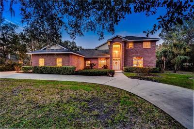 Deland Single Family Home For Sale: 1967 Hillcrest Oak Drive