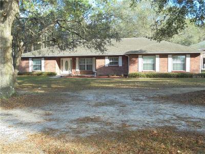 Deland Single Family Home For Sale: 1295 Lemon Street