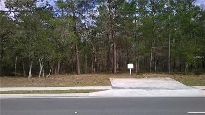 Volusia County Residential Lots & Land For Sale: Howland Boulevard