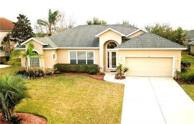 Ormond Beach Single Family Home For Sale: 36 Black Pine Way