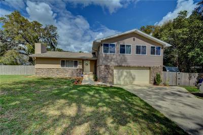 Deland Single Family Home For Sale: 1899 W Beresford Avenue