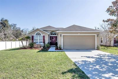 Deland Single Family Home For Sale: 3471 Arabesque Drive