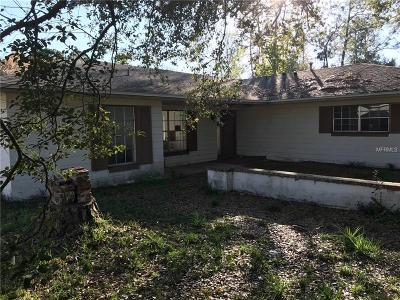 Deltona Single Family Home For Sale: 2911 Day Road