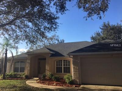 Debary Single Family Home For Sale: 48 Pleasant Hill Drive
