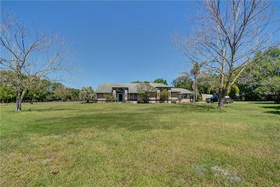 Deland Single Family Home For Sale: 1095 Carter Road