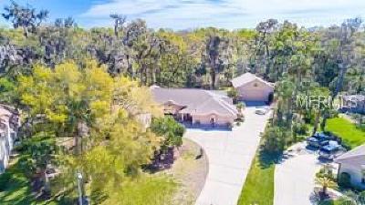 Ormond Beach Single Family Home For Sale: 3925 Kiowa Lane