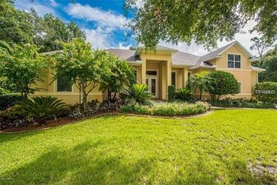 Ormond Beach Single Family Home For Sale: 40 Indian Springs Drive