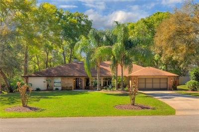 Deland Single Family Home For Sale: 502 Princewood Drive